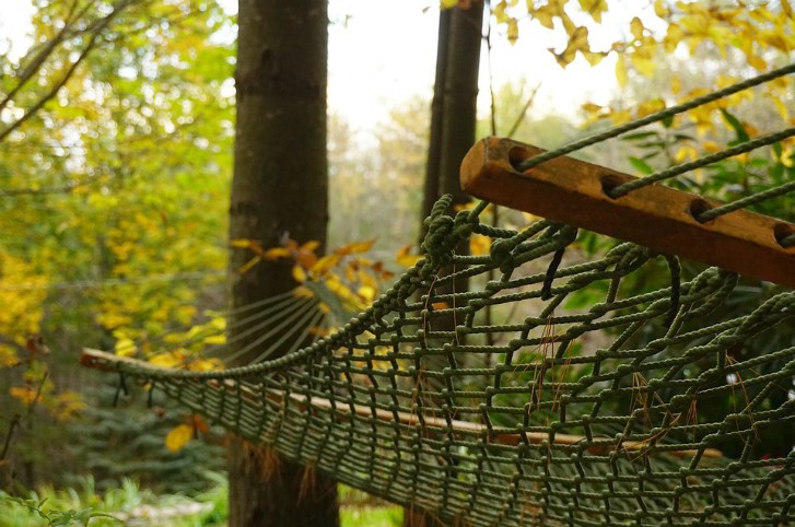 fall hammock
